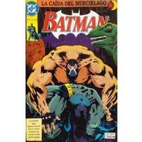 Batman. La caída del murciélago