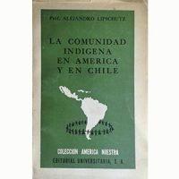 La comunidad indígena en América y en Chile